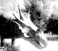 http://www.florianthein.de/files/gimgs/th-19_Spreepark_03.jpg